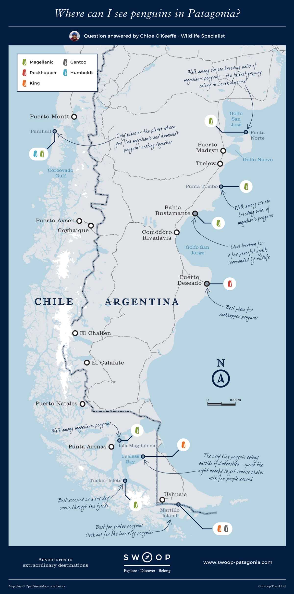 New Map Where-can-I-see-penguins-in-Patagonia
