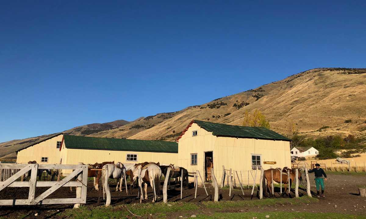 estancia nibepo aike horses