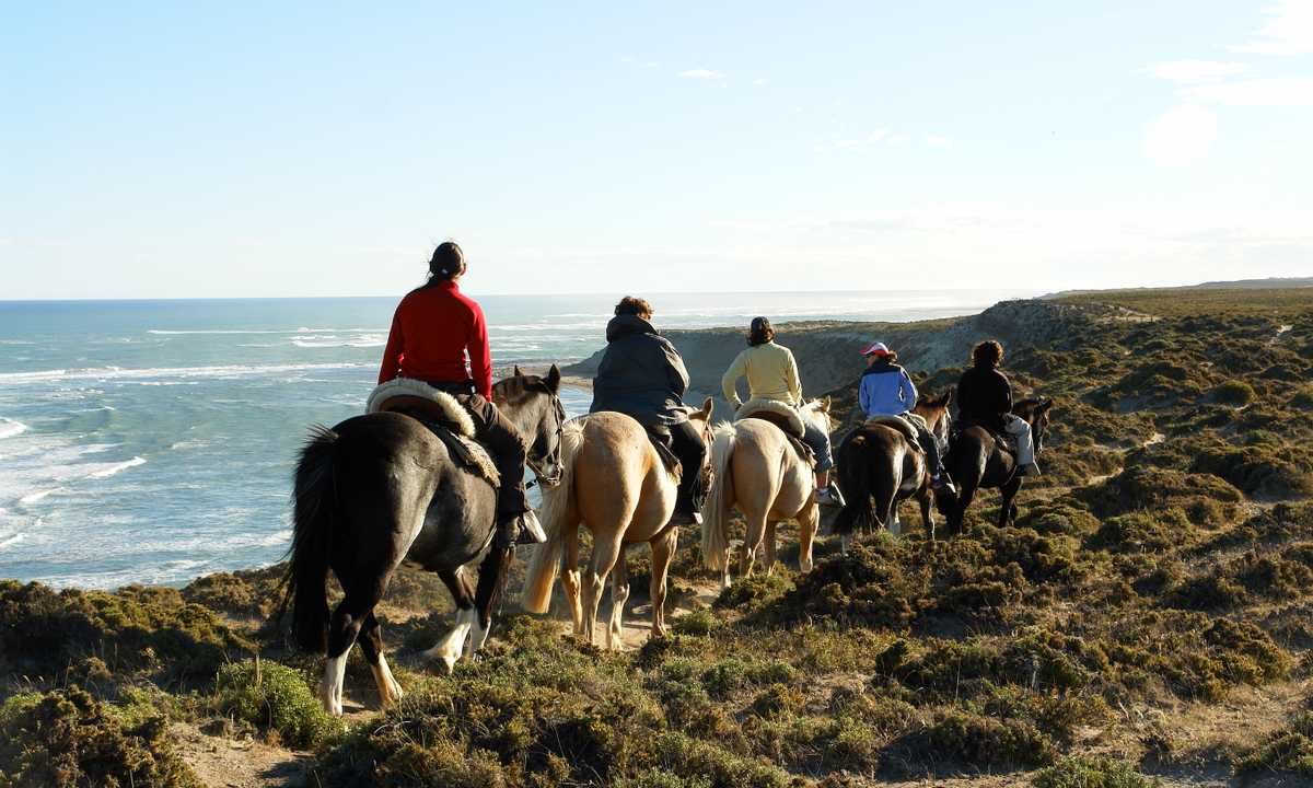 FARO-horseriding