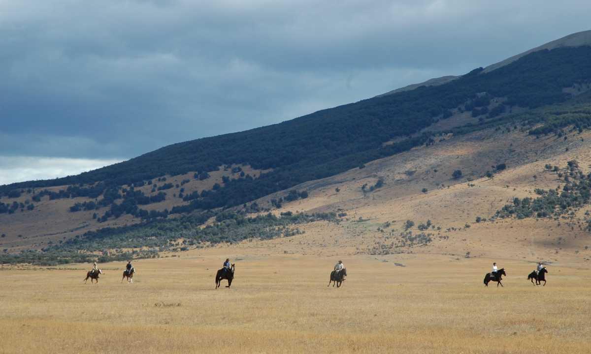 Riding wide open pampas-HRP