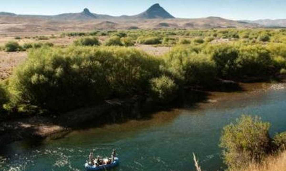 Rio Chimehuin 1