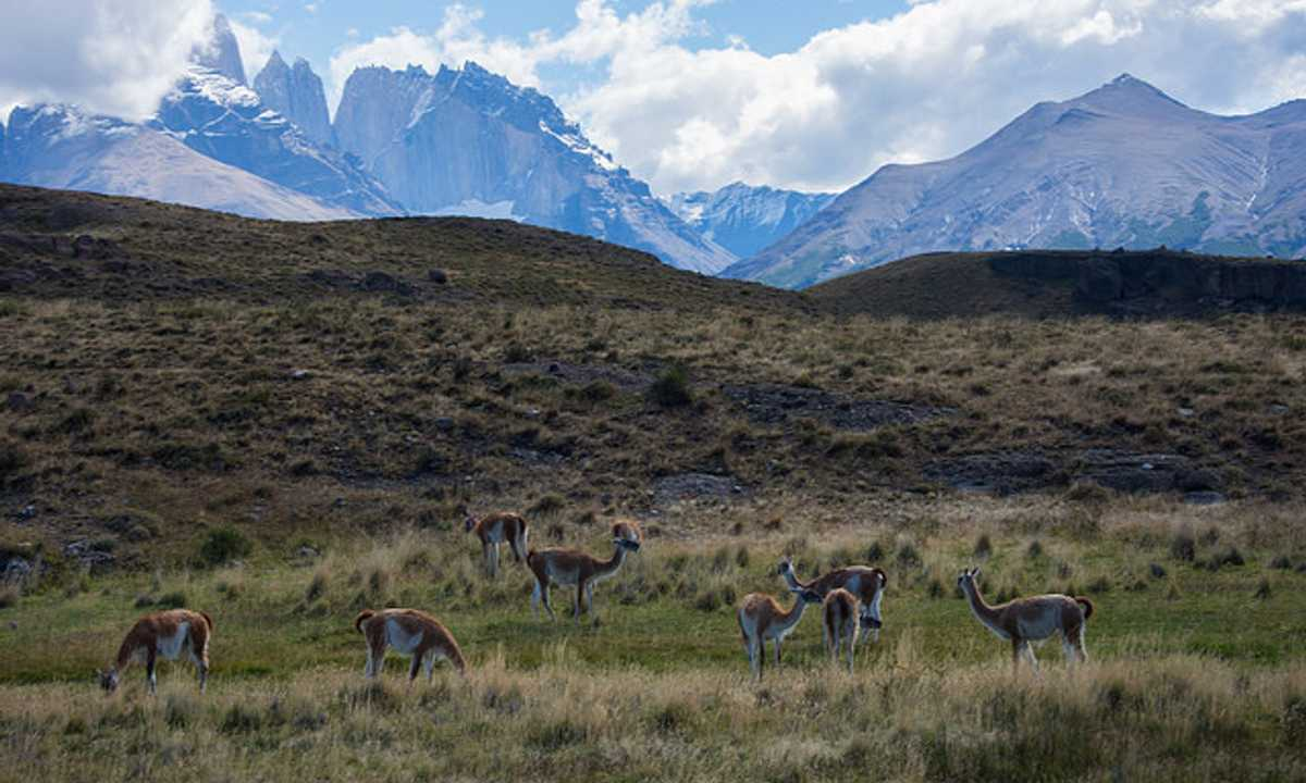 SWO_5_Charlie-Low_ALL_Torres-del-Paine-2