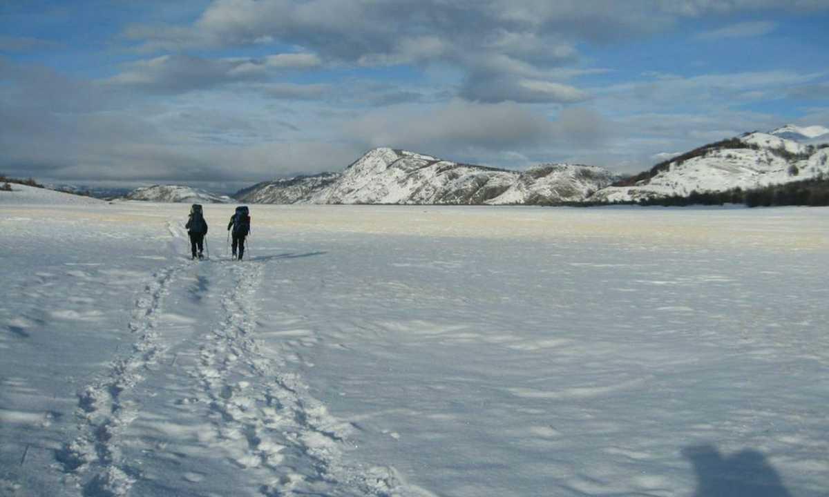 Winter W - Ditmar 6