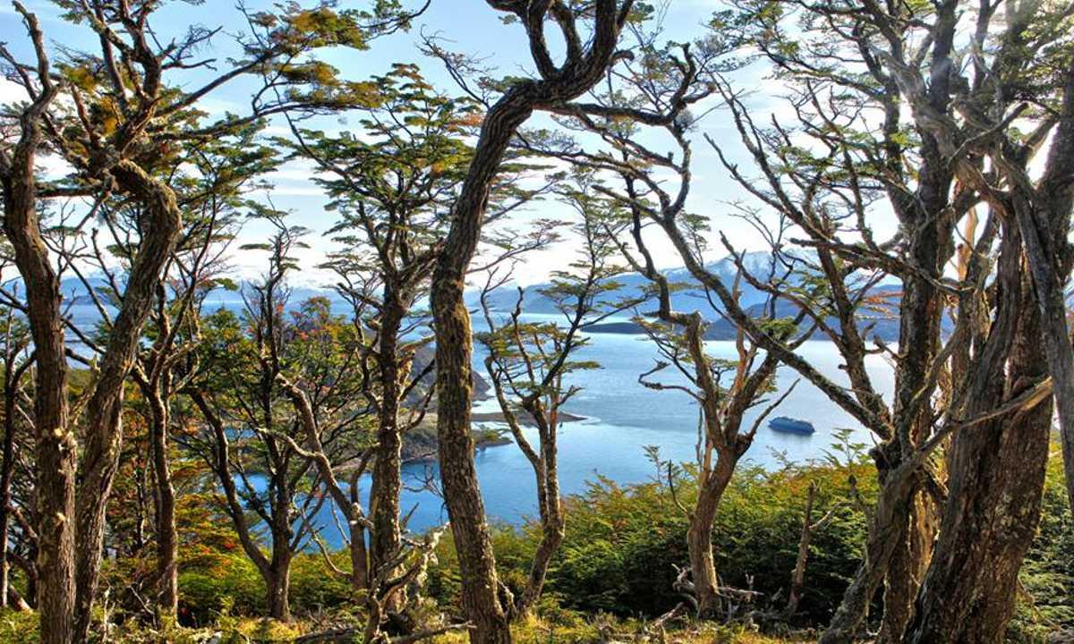 Wulaia Bay 1