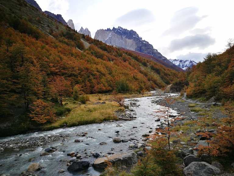 Stream W Trek in Autumn