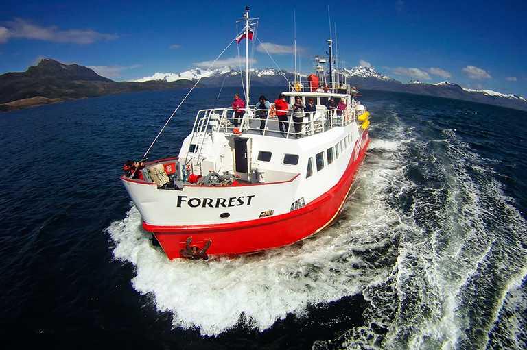 Forrest-Vessel-EX-FR