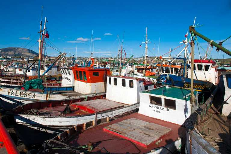 Puerto Natales Port - SWX