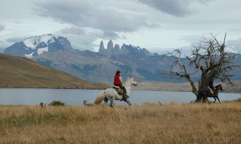 10 day Estancia and Horse Moving Trip