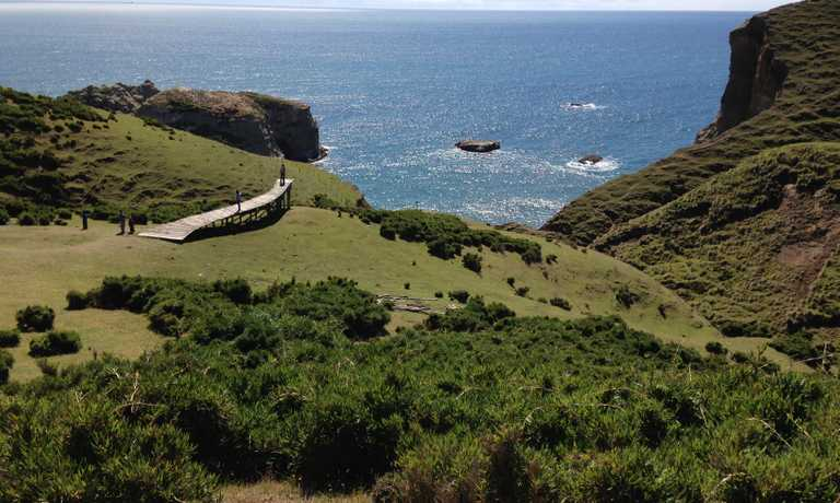 Explore Chiloe Island by Land and Sea