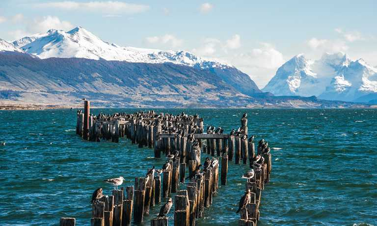 Luxury Chilean Fjords Cruise - Ushuaia to Valparaiso
